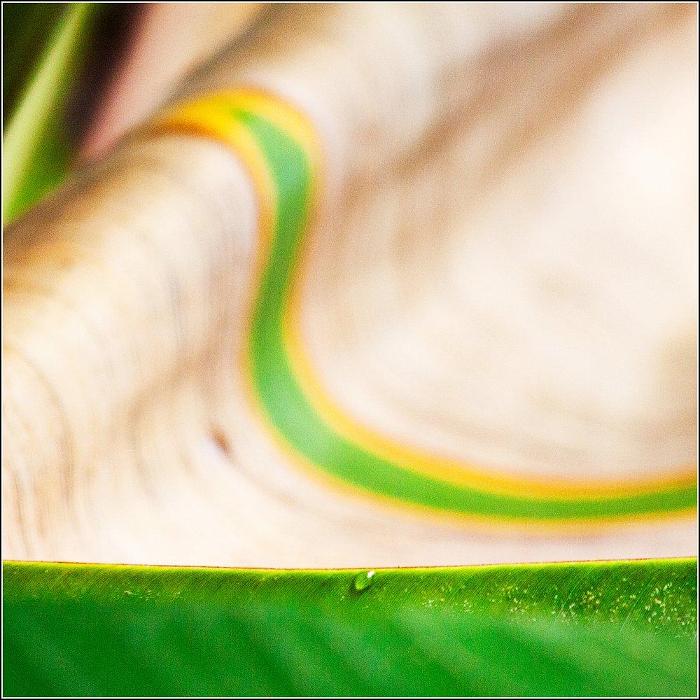 green_art #09